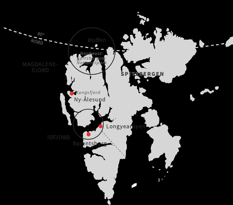 Abenteuer Antarktis- Erkundung des eisigen Kontinents