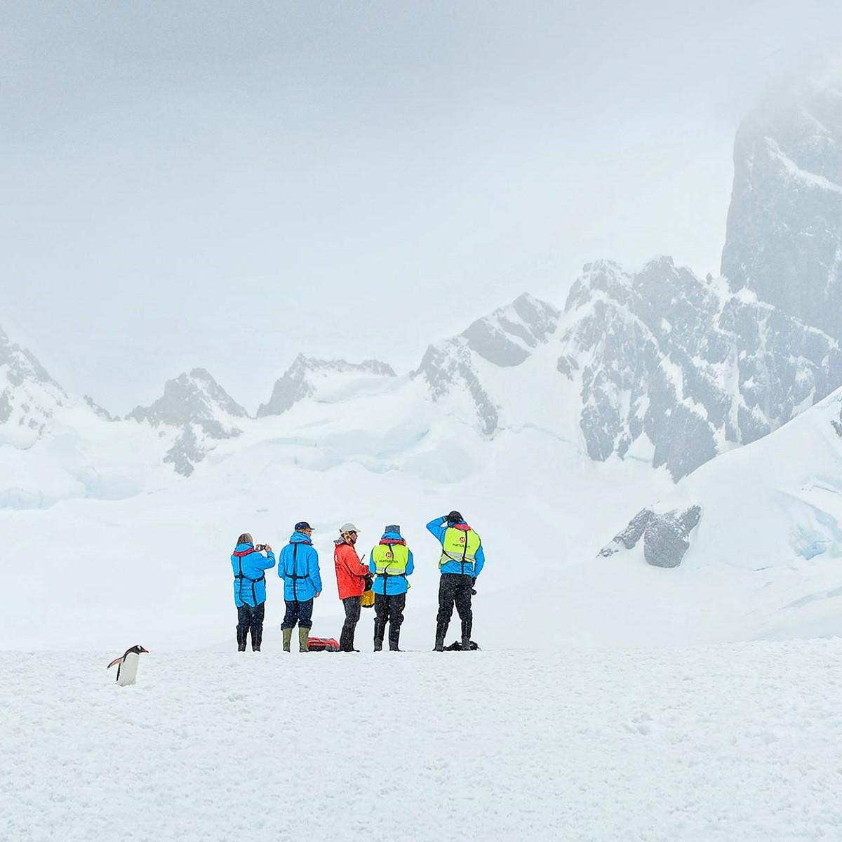 weihnachten in der antarktis hurtigruten de. Black Bedroom Furniture Sets. Home Design Ideas